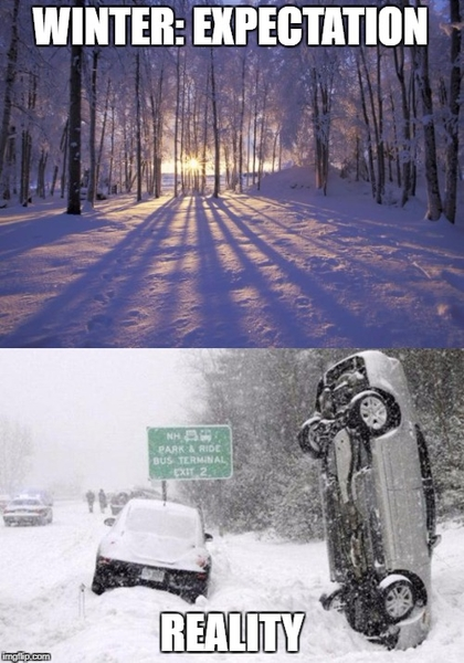 Winter Expectation and Reality