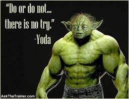 Image result for yoda exercising