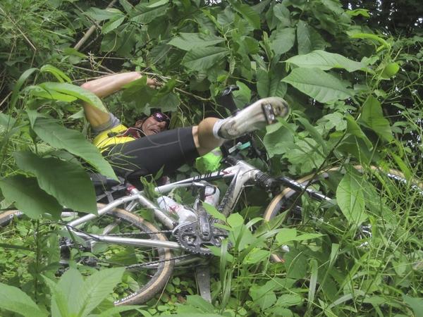 Potomac crash